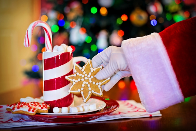 dreamstime_xxl_89059506 Santa with candy and cookies