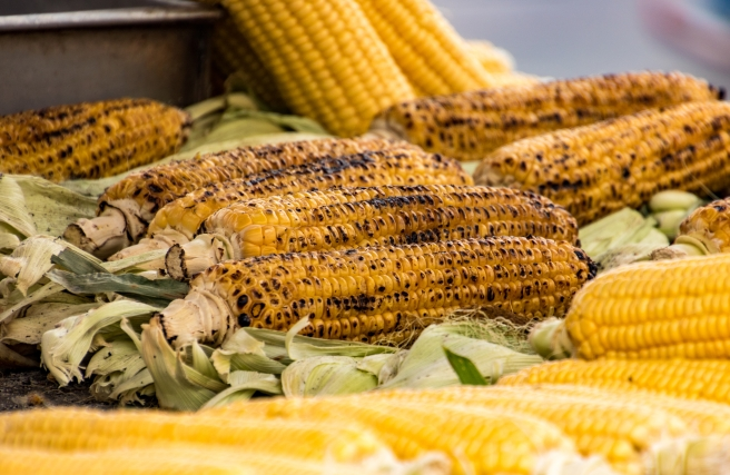 dreamstime_xxl_98172293 roast farm corn on the cob