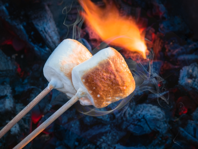 dreamstime_xxl_101632430 food dessert toasted marshmallow