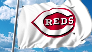 dreamstime_xxl_95319642 baseball flag REDS
