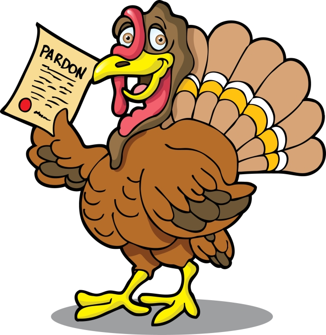 dreamstime_xxl_3492162 Thanksgiving pardoned turkey