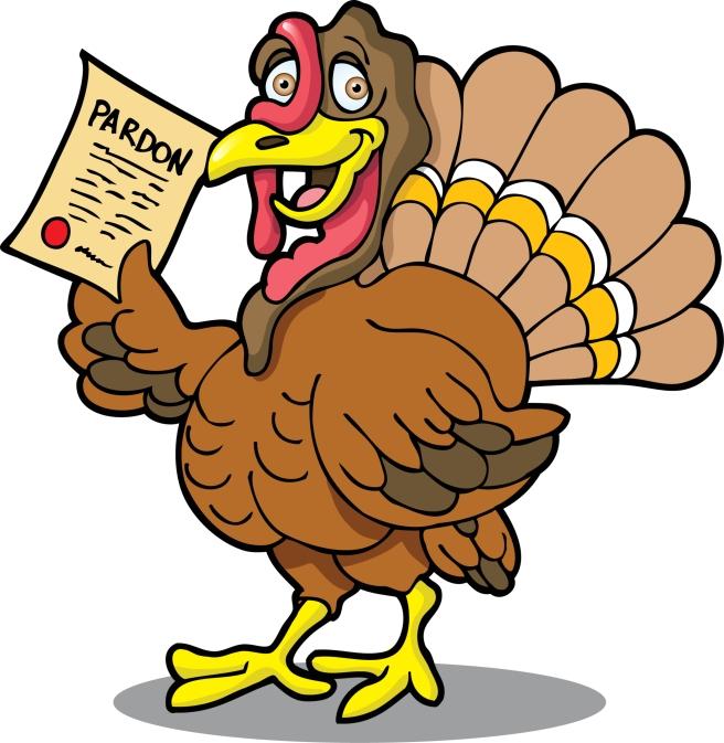 dreamstime_xxl_3492162 Thanksgiving pardoned turkey